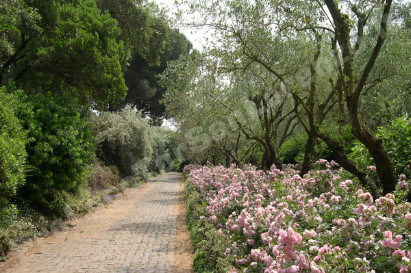 I-giardini-della-Landriana